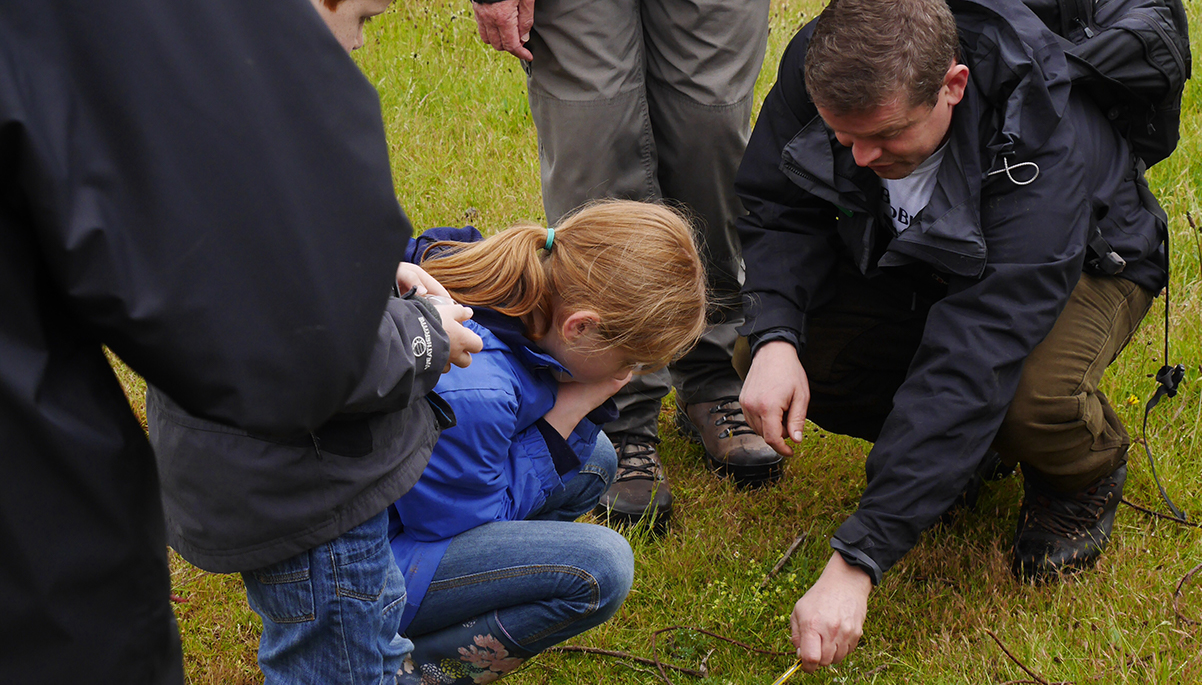 A fun day of getting close to wildlife at Kinver Edge, with free activities and walks all day